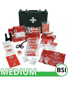 Blue Lion BSI First Aid Kit | Medium