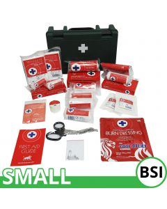 Blue Lion BSI First Aid Kit | Small